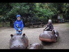 Il Giardino Zoologico di Roma - Bioparc Italia - Antonyo si Maya la grad... Hippopotamus, Maya, Kids, Animals, Youtube, Zoology, Italia, Young Children, Boys