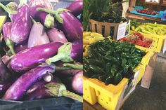 Eggplant and Peppers! What type of peppers? Jalepenos, cayenne, poblano, habenero, and hungarian wax peppers.