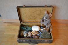 B.C. Stenen: waarneming stenen: Elke kleuter mag een steen kiezen en er iets over vertellen. Wat zien ze en wat voelen ze?