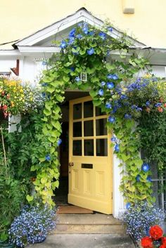 Sunny yellow door and the striking blue Morning Glory-wow! Warning: White and pink wild Morning Glory is poisonous. Cottage Door, Garden Cottage, Cozy Cottage, Cottage Style, Home And Garden, Yellow Cottage, Cottage Entryway, Door Entryway, Cottage Exterior