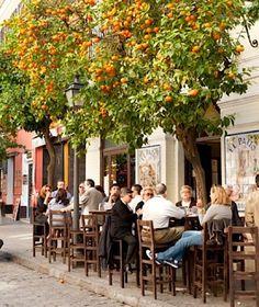 orange tree on a calle Sevillana Spain
