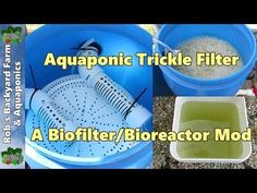 Aquaponic BIO-REACTOR - Part of a Balcony Unit Design: 15 Steps (with Pictures)