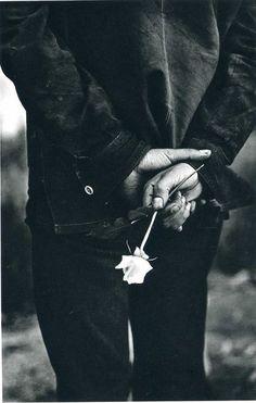 Que cachez vous , Monsieur ? Une rose ou ses épines ?