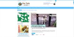 Pet Talk News by JSH Web Designs - Knoxville Web Design Firm - Professional Web Designs at Affordable Prices. 865-407-0006