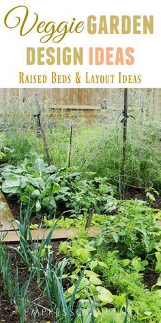Veggies garden design ideas with raised beds and in ground gardens veggie diy vegetable plans . build raised beds for less as low veggie garden Building A Raised Garden, Raised Garden Beds, Raised Beds, Garden Design Plans, Vegetable Garden Design, Vegetable Gardening, Organic Gardening, Back Gardens, Small Gardens