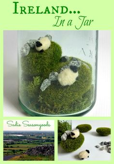 Celebrate St. Patrick's Day by capturing Ireland in a Jar! The rolling hills of Eire come alive with the help of reindeer moss and faux moss stones...then add miniature felted wool Kerry Sheep...and place in a vintage green mason jar for the perfect final touch! #SadieSeasongoods