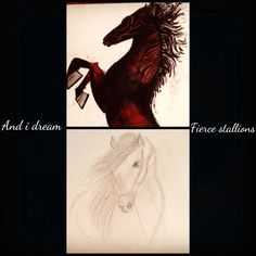 And i dream fierce Stallions... Wild in nature, free in spirit!