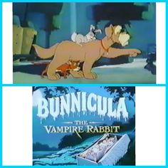 Bunnicula the vampire rabbit #Halloween #classic #cartoon