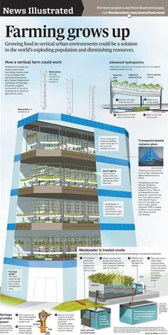 Vertical farming, also known as urban agriculture, gives hope for feeding our ever-growing population. Get ideas for starting your vertical farm. Indoor Farming, Hydroponic Farming, Aquaponics System, Aquaponics Diy, Vertical Hydroponics, Fish Farming, Indoor Gardening, Agriculture Durable, Urban Agriculture