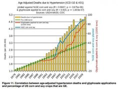 Hypertension and GMOs