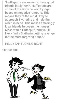 This fits so well, I'm a Hufflepuff (or Ravenclaw based on which quiz I take) and almost all of my friends are Slytherin