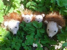 Hedgehogs - free crochet pattern