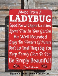 Ladybugs, Advice From A Ladybug Wood Sign, Garden Patio Outdoor Décor, Porch Sign, Spring Summer Ladybug Lover Gift, Nature Inspirational Family Wood Signs