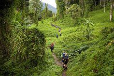 Kokoda Trail, Papua New Guinea