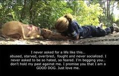 Give a voice to those who can't speak for themselves & speak up when you witness or suspect cases of animal abuse. NEVER BE SILENT! SPEAK OUT! http://www.facebook.com/pages/Animal-Cruelty-Exposed/363725540304160