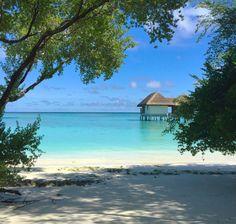 Tempting views of an over water spa pavilion from a beach bungalow @fourseasons #maldives #landagiraavaru #spa