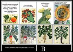 Dettaglio articolo 10636 - botanical tiles - stand Recuperando #recuperando - available on recuperando.com