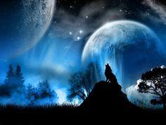 LUA CHEIA!!... : A LENDA DO LOBO Conta-se numa história de encantar Que perdido ainda vagueia no sertão Um Lobo triste, que num eterno uivar Chama por quem lhe roubou o coração Não posso afirmar que seja uma lenda Quando a lua cheia derrama o seu luar Ainda hoje há quem jure e até defenda Que sente o Lobo por seu amor chamar Nessa demanda vagueia o apaixonado Seu triste canto ecoa por todo o lado Melodioso...saudoso e envolto em dor Tentando assim aliviar o seu tormento Será eterno dentro de…