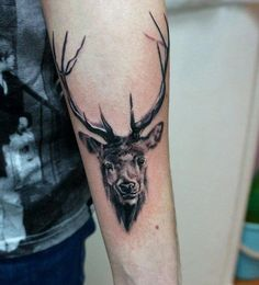 Animal tattoos are very adorable and a good example is a deer tattoo. There are other types of deer, like the Stag, which is somewhat different from the kind type. There's never been a better time to get a stag tattoo. Arm Tattoo Viking, Back Of Arm Tattoo, Upper Arm Tattoos, Norse Tattoo, Antler Tattoos, Head Tattoos, Cute Tattoos, Beautiful Tattoos, Tatoos