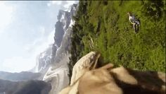This Is What Flying On An Eagle's Back Looks Like
