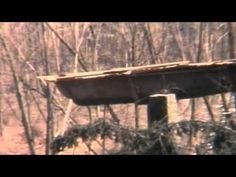 Mushroom House, Pittsford,New York