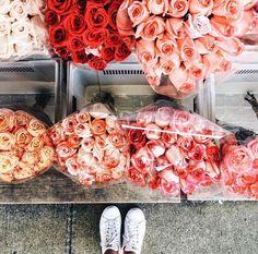 ☼ ☾ ↠ ᴘɪɴᴛᴇʀᴇsᴛ: @lfeaunati ☼ ☾ ↠ instagram: lili.feaunati