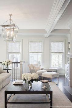 Elegant Family Room Interior Design by Leo Designs, Ltd. Chicago