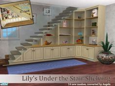 Under stair shelving