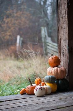 Gathering for The Kalessan Alignment. Original Caption: Fall Planning Guide And Bucket List - The Daily Positive Autumn Cozy, Autumn Fall, Autumn Feeling, Autumn House, Autumn Morning, Autumn Garden, Summer Fall, Autumn Aesthetic, Christmas Aesthetic