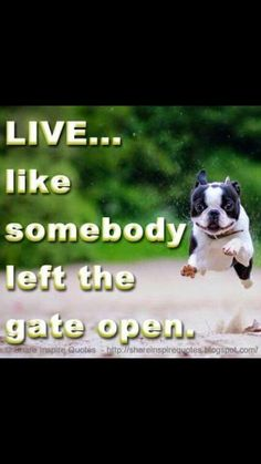 Live like someone left the gate open.