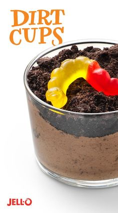 No childhood is complete without taking a spoon to dirt, mud and worms! Bring the mess inside with JELL-O Instant Pudding, cookies, and gummy worms. Make Dirt Cups, a snack time classic as old as dirt!