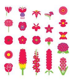 Ruby blooms in August - Stuart Gardiner Designs