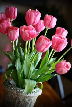 beautiful pink tulips in a stone planter.  great.  thank you, j
