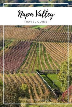 Your guide to Napa Valley. Things to do besides drink wine. :) Check out the blog to read more: http://jannaonajaunt.com