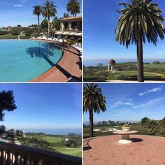 A little #staycation  #Newport #California #dayoff   #californiaadventure #californiadreaming #newportbeach #sunshine #palmtrees #views #travel #travelphotography #vacation #nofilter #nofilterneeded #nothingisordinary #visualsoflife #moments #memories #thehappynow #happiness #socal #livelife #lovemylife #hunterphoenix