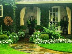 Beautiful front yard landscaping idea!