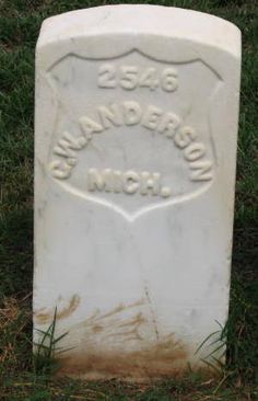 George W Anderson, born about 1833 died from Starvation/Debilitas/ at Andersonville Prison 27 Dec 1864.  He served with the 23rd Regiment, Michigan Infantry Company:	E.