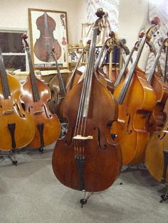 Eastman 305: Nahrmann Bass Shop Inventory