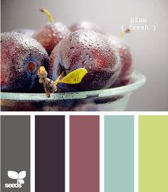Ok here is the colour scheme I am now going with...time to start finding items that work with it!     Plum fresh - this is a very nice colour group. Jeff was talking about a blue dresser...