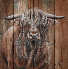 Wood Paintings, Painting On Wood, Highland Cow Painting, Scottish Highland Cow, Elephant Poster, Cow Art, Cute Animal Pictures, Cows, Decoration