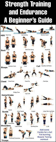 Strength Training and Endurance – A Beginners Guide Complete Lean Belly Breakthrough System http://leanbellybreakthrough2017.blogspot.com.co/