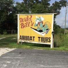 #wildbillalligatortour #citruscounty #florida #babygator #gator #alligator #wildbillairboattours #wildbillairboat#inverness#travel#cherylshomecooking