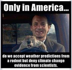 Only in America do we accept weather forecasts from a rodent but deny climate changes from scientists