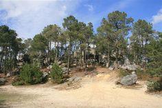 Vous allez traverser un des plus beaux chaos rocheux du massif de la forêt de Fontainebleau situé aux alentours du charmant village de Larchant. Transport : Point de départ = gare SNCF de Nemours Saint-Pierre Point d'arrivée = gare SNCF de Bourron Marlotte...