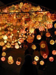 Lotus lantern festival in Korea