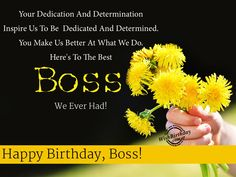 107 best happy birthday wishes for boss images on pinterest in 2018 happy birthday wishes for boss m4hsunfo