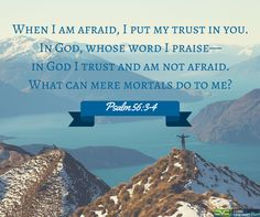 Psalm 56:3-4  #Scripture #quotes #Bible #Cobbvineyard #verse cobbvineyard.com