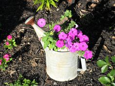Another watering can planter