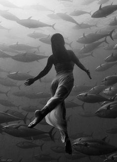 """ 'Mermaid' swims with tuna"" off coast of Malta. Saho Harada photographed by Kurt Arrigo."