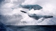 Whales flying in the clouds
